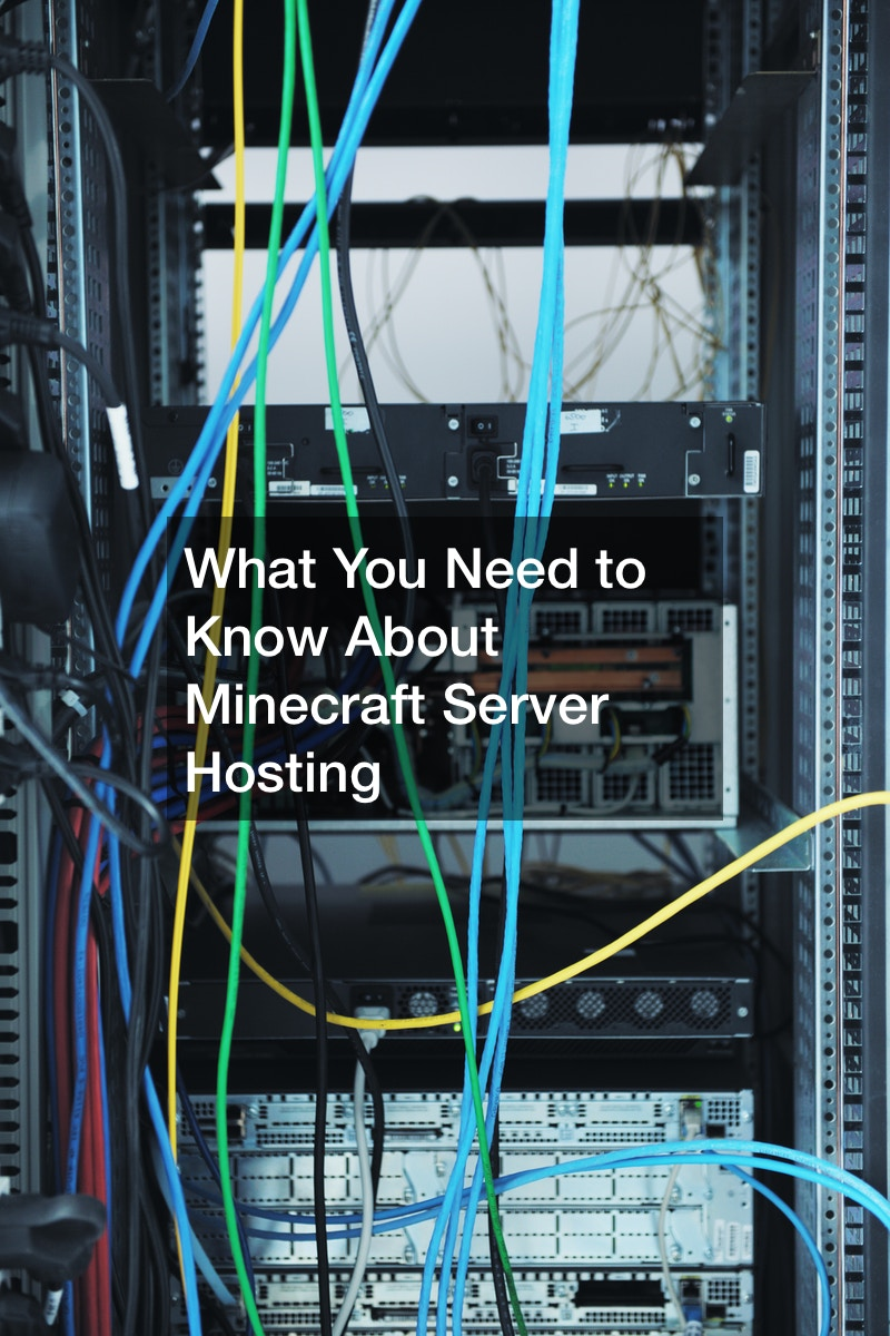 What You Need to Know About Minecraft Server Hosting
